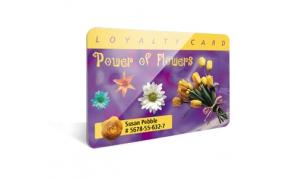 Card Vision voorbeeld card Evolis Carte Flower 1