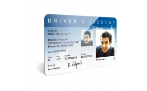 Card Vision voorbeeld card Evolis Carte drivers licence ENG